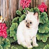 Art Kittens Jigsaw 3