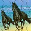 Black Horses Jigsaw Puzzle