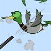 DuckNCover