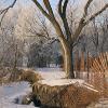 Jigsaw: Winter Scene