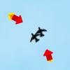 Kill Birds With Rockets