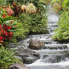 Nature Beauties – Waterfall Jigsaw