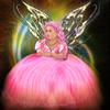 Night Fairy Puzzles