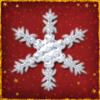 Protect Snowflake