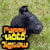 Puppy VIDEO Jigsaw
