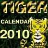 Tiger Calendar 2010