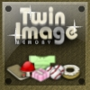 Twin Image Memory