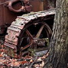 Very old tractor in forest